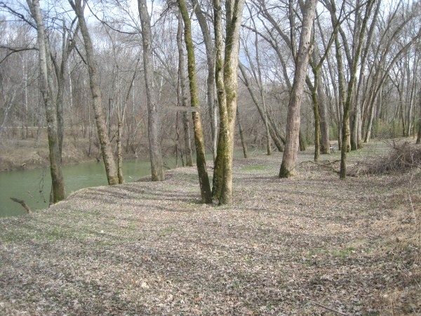 SOLD!  REDUCED! 75+- ac $100,000 or Tract 1: 27 ac +- $35,500 Tract 2: 48 ac+- $64,500 Kentucky Real Estate