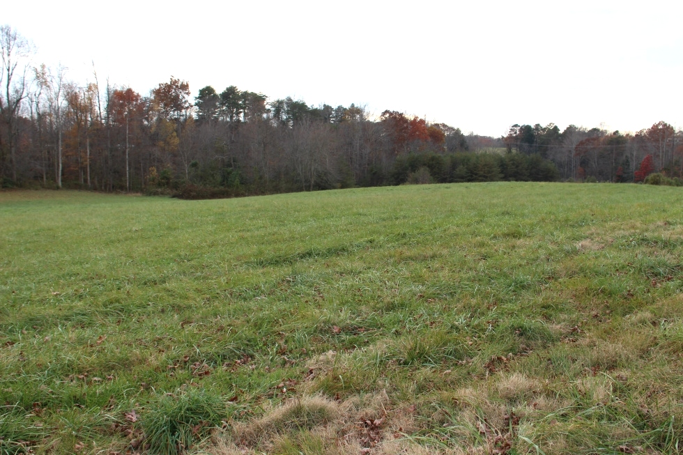 Sold! Snow White Lane | Free Gas! 11.69 acres of Windridge Farm with a pond and partly fenced. $99,000 Kentucky Real Estate