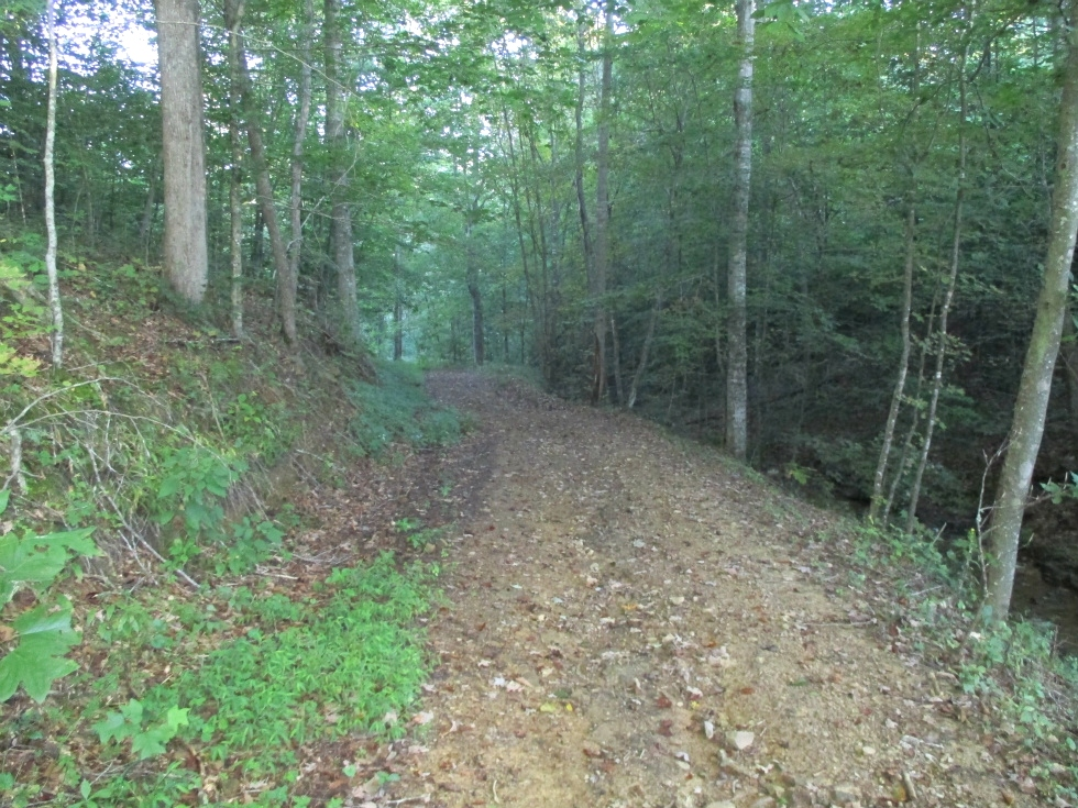 Sold! Newman Campbell Rd. off of Hwy 92  | 200 acres +/- bordering Jellico Creek & Indian Creek Kentucky Real Estate