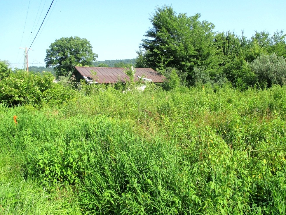74 Arlie Leach Rd., Williamsburg | 2.04 surveyed acres at the junction of Skaggs Branch Rd. and Arlie Leach Rd. Kentucky Real Estate
