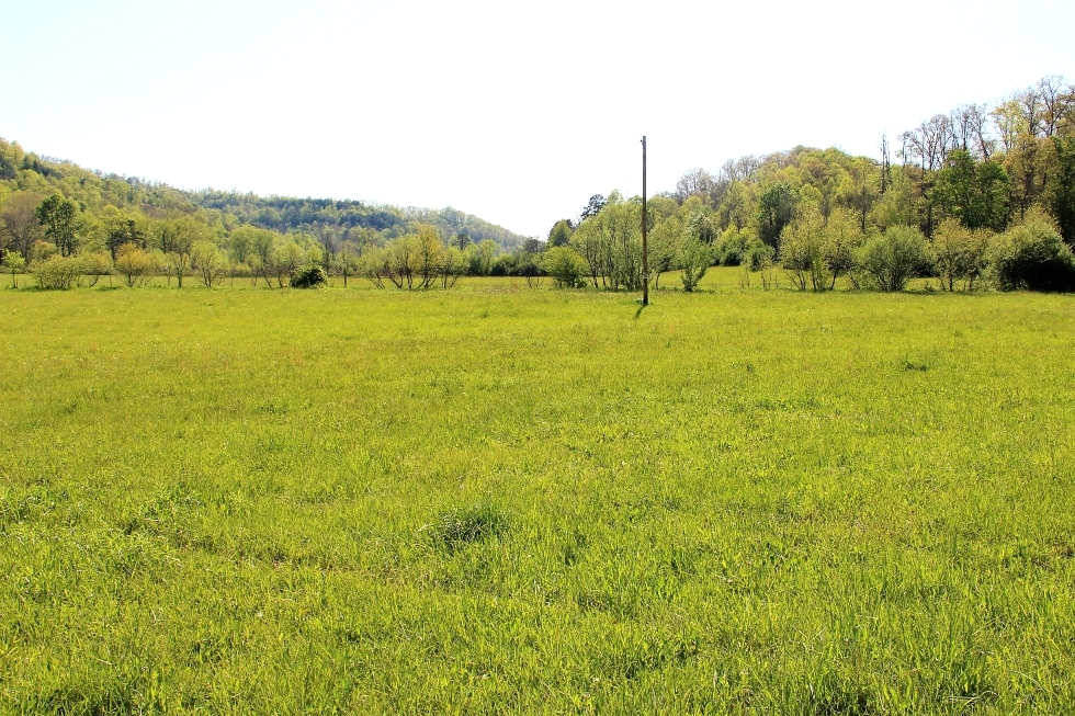 78 Cornett Rd., Wmsbg  | 38  +/- acres located on the banks of Cane Creek near the Boston Community.  Kentucky Real Estate