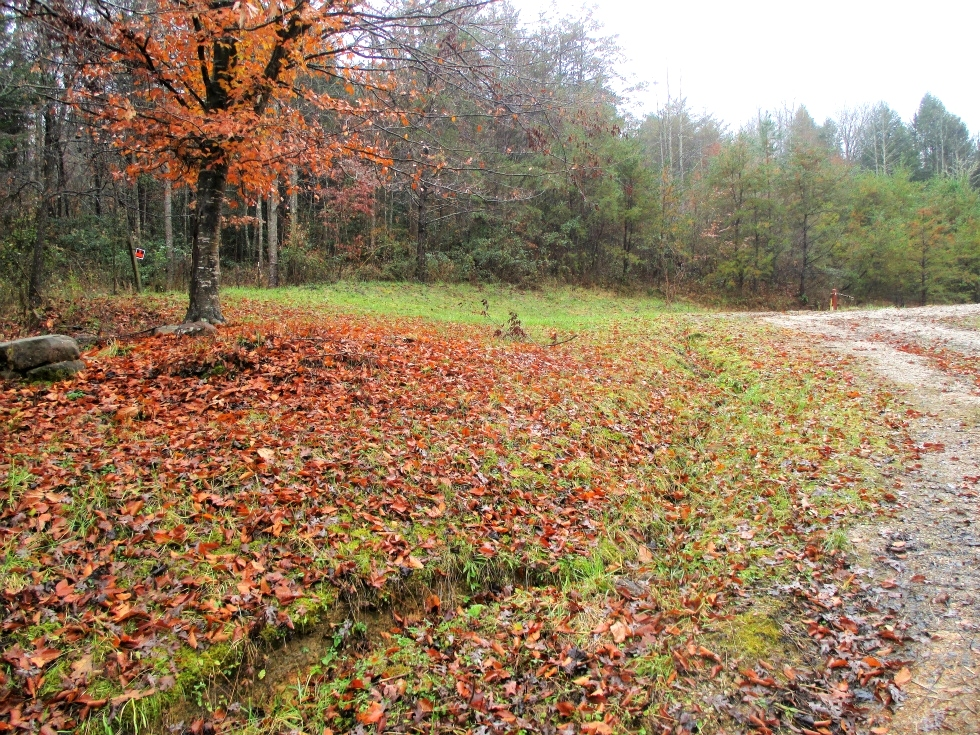SOLD 109 Sanders Creek Rd. | 4.1 surveyed acres that already has water, septic, and electric.  Kentucky Real Estate