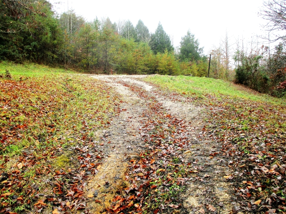SOLD 109 Sanders Creek Rd. | 4.1 surveyed acres that already has water, septic, and electric.