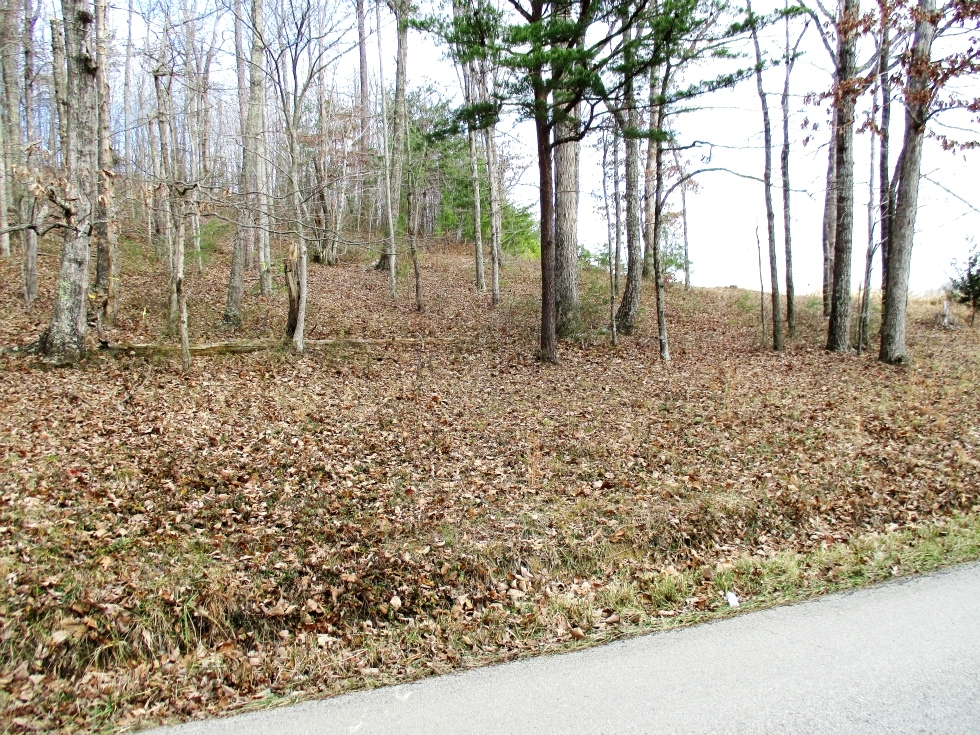 Log Cabin Rd. Looking for a place to build or place your home? Look no more! This .79 acre lot