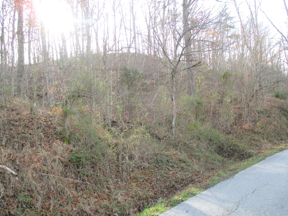 Sold! 1111 Jr. Rowland Rd | 45 Acres +/- located close to exit 15 at Goldbug and both Williamsburg and Corbin. Kentucky Real Estate