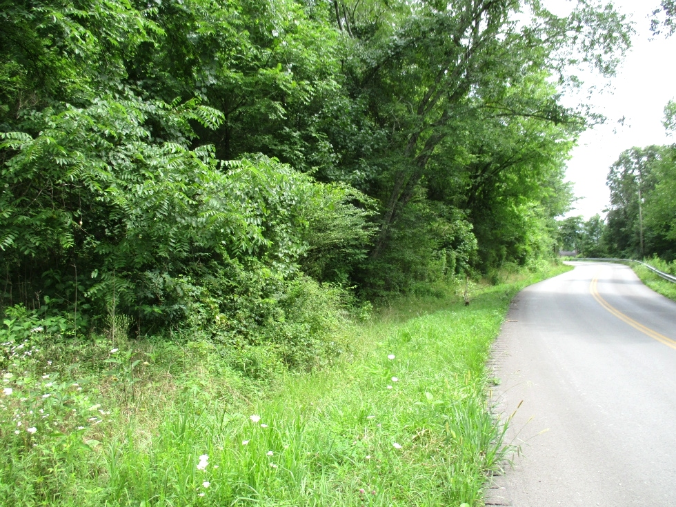 Sold!  Hwy 1804, Wmsbg 6 acres +/- bordering Hwy 1804 @ 2 miles from South Hwy 25w. Mostly wooded with 2 access drives and the owner indicates 2